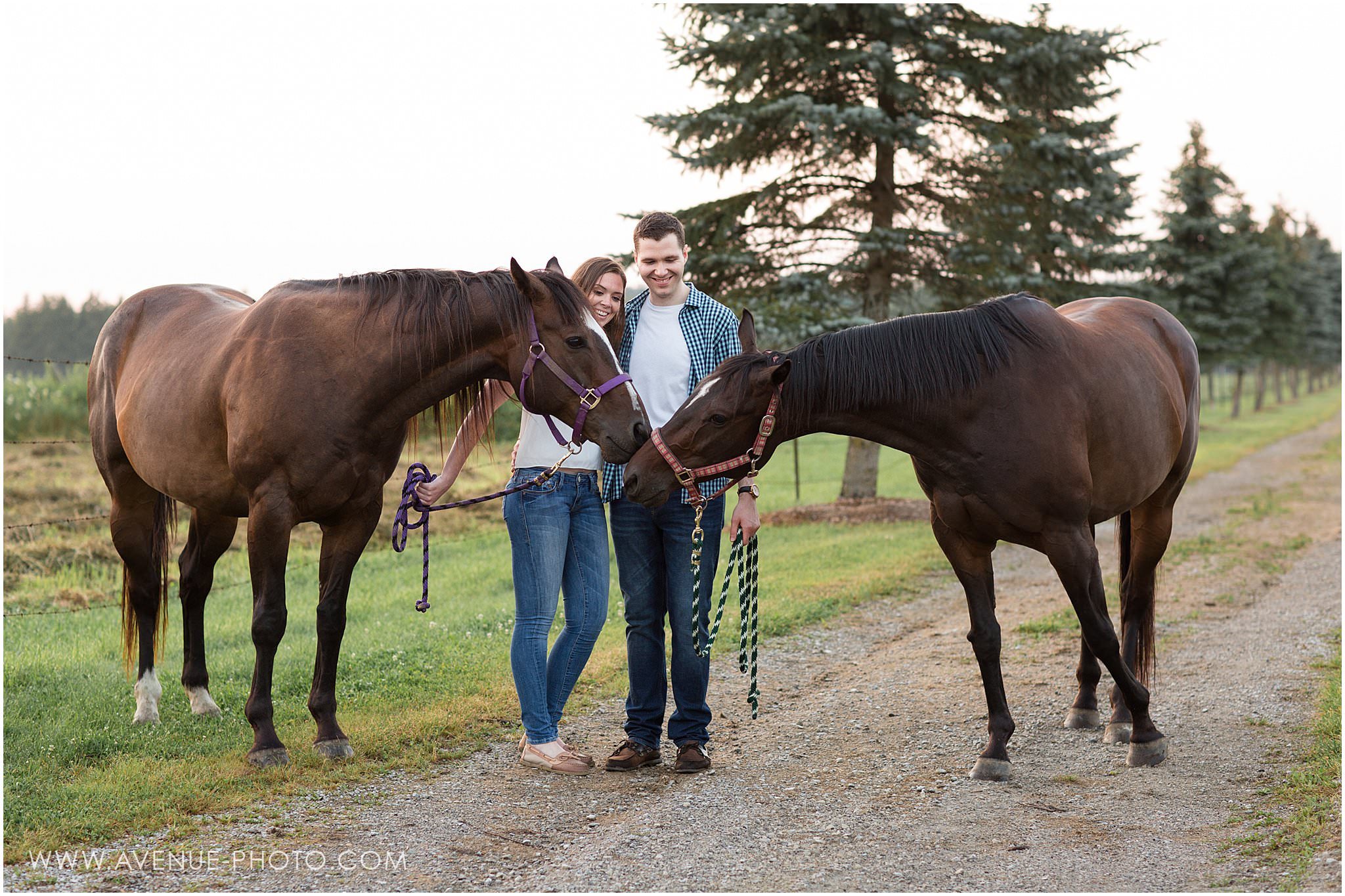 Country Farm Engagement Photos - Stoufville, Engagement photo shoot with horses, Avenue Photo, Toronto Wedding Photographer